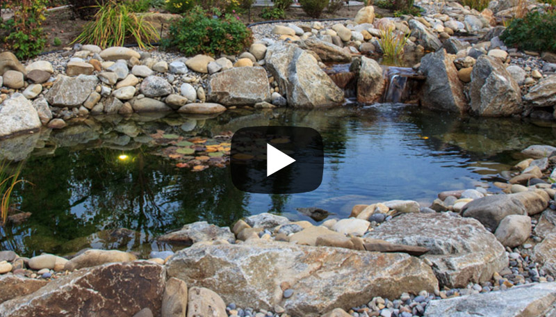 Backyard garden ponds and water features for your yard